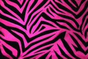 10 yards Flocking Taffeta Fabric Roll - Zebra Fuchsia